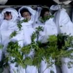 Syria's 'Twitter jihad'