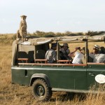 Kenya's safaris suffer as Shabaab scares tourists