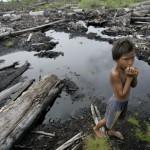 Indonesia's rapid deforestation