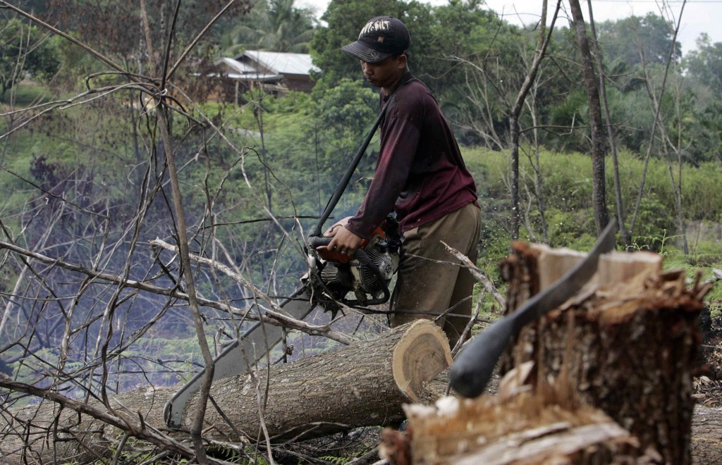 A worker uses chainsaw to cut an acacia log during an area clearing in central Sumatra, Indonesia, on April 30, 2008. (AP Photo/Achmad Ibrahim)