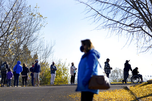 Voters waiting in line, six feet apart, under bare trees and a blue sky.